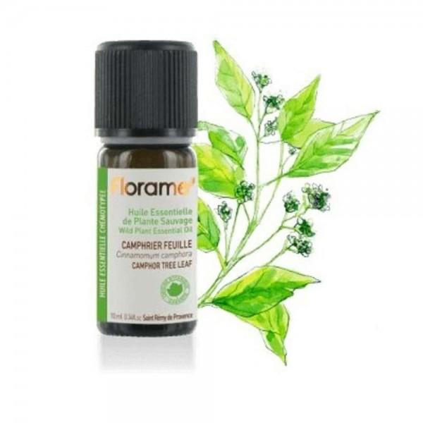 Camfor (frunze) Salbatic 10 ml