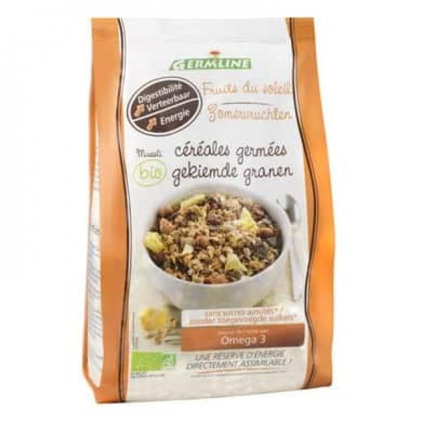 Musli din cereale germinate Fruits of the Sun bio 350g