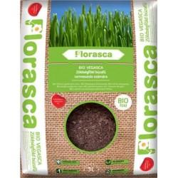 Pamant ecologic pentru iarba de grau 3 L