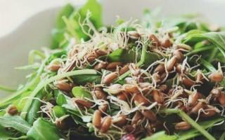Germeni din grâu - beneficii și modalități de utilizare