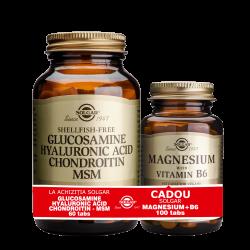 Solgar Glucosamine Hyaluronic Acid Chondroitin MSM 60tablete + Magnesium cu B6 100 tablete GRATIS